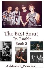 5SOS | The Best Smut On Tumblr | Book 2  by Ashtralian_Princess