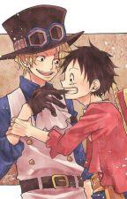 [SaLu] Hãy tin vào người anh trai ngu ngốc này một lần nữa Luffy à by ichigo_kun15