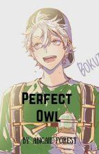 perfect owl //bokuto koutarou ff.// by Abigail-Forest