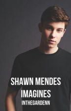 Shawn Mendes Imagines by InTheGardenn