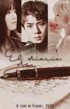 El diario de Taeyeon ✒ HanHun #2 by Flowers_9490