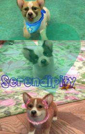 Serendipity by nintendogsblue