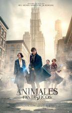 Animales fantásticos y Dónde Encontrarlos (película) by Ana_Nolazco