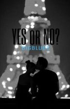 YES or NO? by bigblues