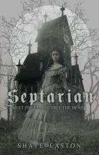 Septarian by shayebay