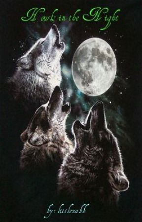 Howls in The Night by littlezabb