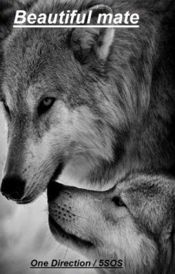 Beautiful mate (One Direction/ 5SOS werewolf fan fiction)