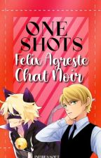 One Shoots-Felix Agreste y tu by Crazy_killer21
