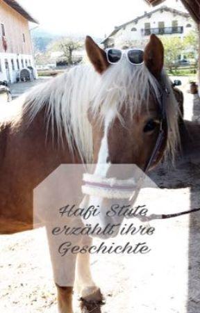 Hafi Stute erzählt ihre Geschichte by tisiphone876