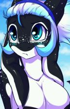 """Pictures of Whisper and Random Things!!! """"ψ(`∇')ψ by Whisper_The_Orca"""