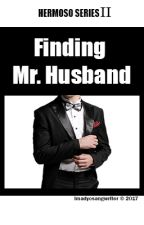 Finding Mr. Husband [Hermoso Series] by amalditanghel