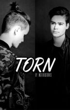 Torn // (Completed) by instereostories