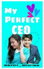 My Perfect CEO by SEAM_Stories