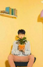 Class President //YoonMin by -JinsBlanketKick
