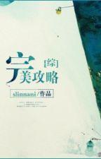 Hoàn mỹ tiến công chiếm đóng - slinnani (tống) by Tsubaki