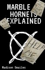 Marble Hornets Explained by CavalryEXE