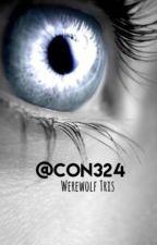 Werewolf Tris by Con324