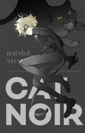 Chat Noir x Reader by Tiffanythetot