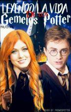 Leyendo la vida de los mellizos Potter by Malfoyxme