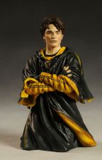 Scamander's Daughter (Cedric Diggory X Reader) by _InfamousAuthor_