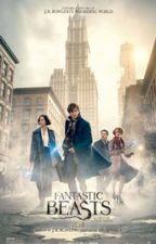 Fantastic Beasts by MerelGerritzen