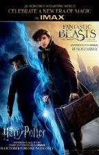 The time of his life - an original Harry Potter & Fantastic Beasts fan fiction by seasea_