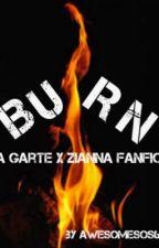 Burn: A Garte X Zianna FF by awesomesos63