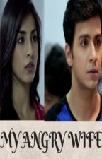 MY ANGRY WIFE- SANDHIR ONE SHOT by crazywriter1116