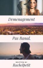 Déménagement pas banal by RachelPetit