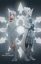 Weiss X Male Neko Reader X Winter by BlackHoodieKid