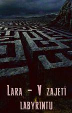 Lara - V Zajetí Labyrintu by ada228
