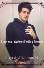 I Love You... (Anthony Padilla x Reader) by majesticflamingo16