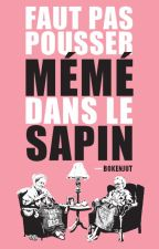 Faut pas pousser Mémé dans le Sapin by Bokenjut