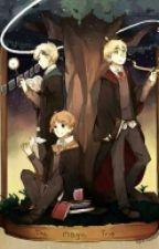 Magic Trio At Hogwarts: Year 1 by sapycapy