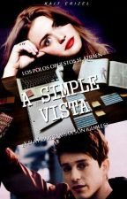 A Simple Vista || Alonso Villalpando [CD9] by -RosePxssenger