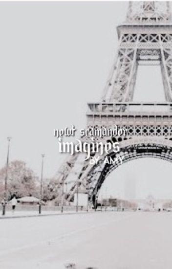 IMAGINES | NEWT SCAMANDER X READER [HOLD]