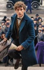 a newt scamander one shot/imagine thing by remallory