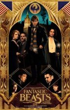 Fantastic Beasts and Where To Find Them Imagines/Preferences by _MyChemicalUrieVeil_