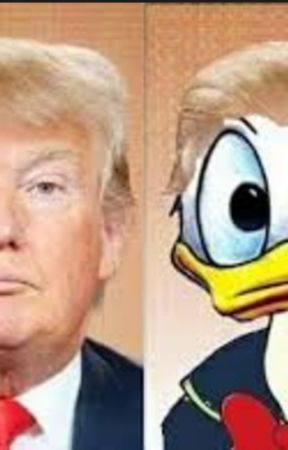 Why Donald Duck would make a better president than Donald Trump by JohnCena4ever