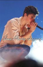 Imagine Book - shawn mendes by IILLUMIINATE