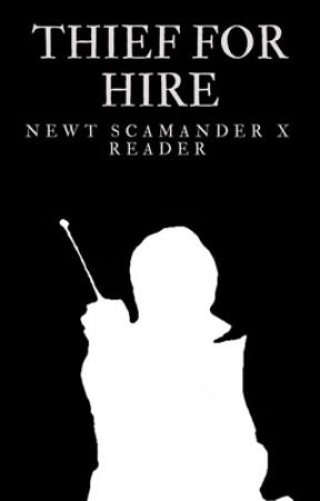 Thief For Hire || Newt Scamander x Reader by FicsByJ