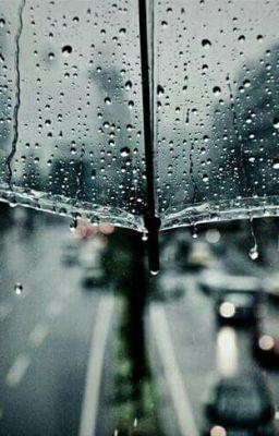 Đọc truyện cơn mưa mang tên