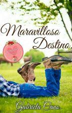 Maravilloso Destino. by cjossgaby