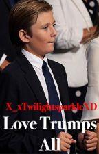 Love Trumps All (Barron Trump X Reader) by X_xTwilightsparkleXD
