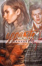 Opposite worlds (h.s) by oceanharryx