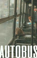 autobús; cashton by hdweuhood