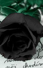 Чёрная роза.(Крипипаста и Я.2.) by NikaDiavlo