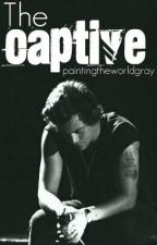 The Captive (One Direction boyxboy/slash FanFiction) by paintingtheworldgray