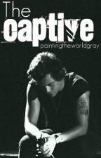 The Captive (One Direction boyxboy/slash FanFiction) by paintingtheworldgray