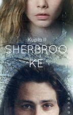 Sherbrooke (fin) by _viivijohanna